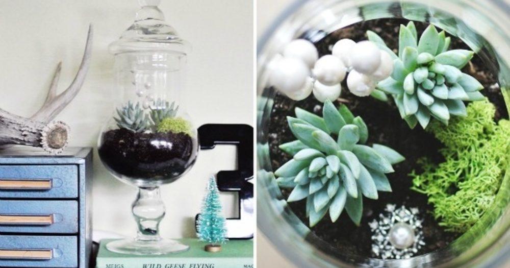 Potten Voor Planten.Vul Glazen Potten Met Planten Pokon Groen Doet Je Goed